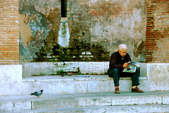 Reading (victoria0805) Tags: italy man rome bird reading pigeon smrgsbord nikond40