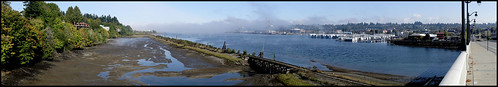 Midday Fog on Budd Bay