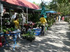 ตลาดบางน้ำผึ้ง 1