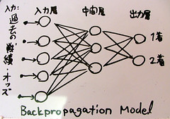 Backpropagation Model