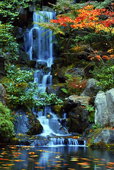 Heavenly Falls in the Fall at the Japanese Gardens (Gigapic) Tags: gardens oregon portland japanese waterfall nikon falls nikkor heavenly bigmomma d80 pfogold 3wayassignment83