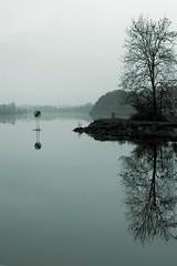 Lough Erne, Co. Fermanagh (Siobhn Bermingham) Tags: morning ireland blackandwhite bw lake nature water reflections lough calm northernireland fermanagh enniskillen lougherne
