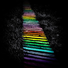 Spectrum Path (Villi.Ingi) Tags: wood color colors canon square spectrum path walk surreal colored spectral 40d samspil