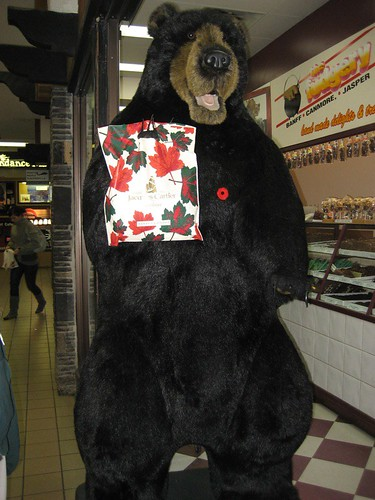 Big Bear at the fudge store in Banff
