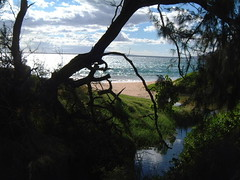 MAUI-REFLECTING CREEK (SnapShotStar) Tags: ocean sunset sea tree creek island hawaii scenery stream maui naturesbest kihei sunseaandsand 10millionphotos takeitoutside