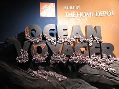 ocean atlanta sign ga georgia aquarium atl georgiaaquarium voyager acquario acuario oceanvoyager 3264x2448 hoyasmeg