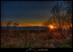 sun is saying goodbye for today (medianita.si) Tags: blue trees sunset sky orange nature tripod slovenia 1022mm hdr 1022 beautifull lenart highgrass photomatix 5exp hdrsunset abigfave canon400d photoshopcs3 hdrlandscape topazadjust