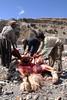 Yak Slaughter (steve_wdwd) Tags: nepal yak slaughter annapurna butchers butchery manang