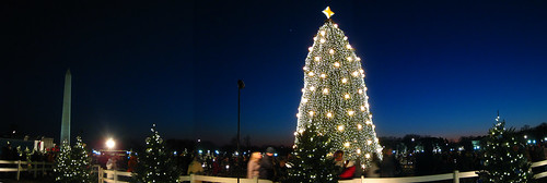 Christmas Tree Panorama: White House