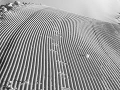 snowcat's track (Winfried Veil) Tags: schnee winter white snow lines germany bayern deutschland bavaria spur track veil hell struktur structure level layer weiss winfried oberstdorf sloping snowcat pistenraupe allgaeu linien weis ebene schief snowgroomer brightwhite mobilew winfriedveil
