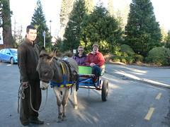 P1180664 (hanmer_springs) Tags: newzealand wagon key donkey canterbury kart don hanmersprings