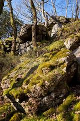 Hockinston Tor (Bruce Little) Tags: tor dartmoor hockinston