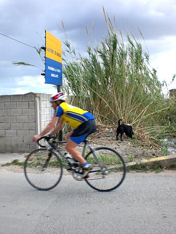 palmar-biker
