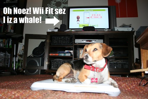 Wii Fit says my dog is a whale