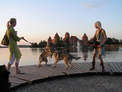 Surreal (mdanys) Tags: life girls castle dogs smile wow fight amazing interesting play best osama german unusual lovely lithuania trakai lietuva danys mywinners aplusphoto flickrestrellas thebestofday gnneniyisi mindaugasdanys mdanys