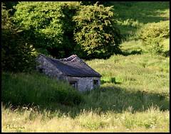 Near Brassington (philwirks) Tags: derbyshire picnik myfavs philrichards cooliris show08 unlimitedphotos sonyalphadslra200