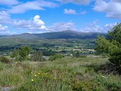 Ireland_0094.jpg (Starman9x) Tags: ireland florafauna