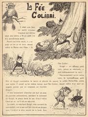 fee colibri