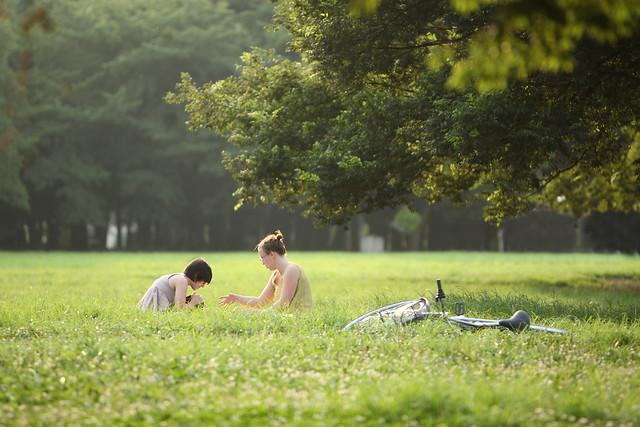 日だまりの草原