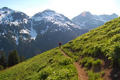 Trekkin' (Trevor Ducken) Tags: usa mountains landscape outdoors washington nikon hiking alpine cascades pacificnorthwest northcascades d40