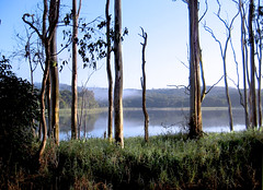 Tinaroo Dam (Perfectoarts) Tags: australia cairns tropicalnorthqueensland canonlenses australianimages canoneoscamera perfectoarts ingriddouglasphotography cairnsphotography ingriddouglasartist
