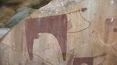 Las Geel (essi.musse) Tags: cow somaliland cavepainting lasgeel