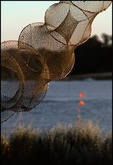 Hanging out on The Net (Kirsten M Lentoft) Tags: sunset net water fishingnet haveaniceweekend momse2600 mmmmuuahhhh ejbyhavn kirstenmlentoft
