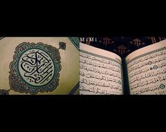 شهـــــــر الـــقـــرآن (M ï M ï) Tags: ramadan شهر القرآن الكريم رمضان النحل سورة