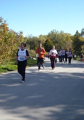 kim in the race (Longboat Daily Express Editor) Tags: toronto race running run racing 10k longboat jogging mcpeake 10km zoo2008 canadarunningseries