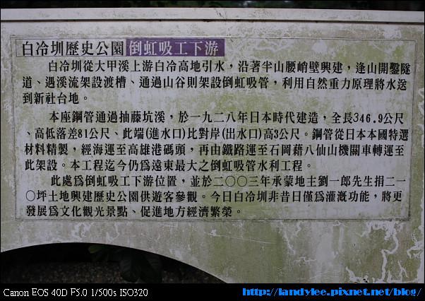 9710新社花海前奏_072.jpg