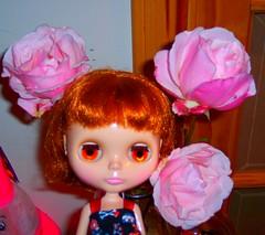 Dagmar Gina & the Very Last Roses