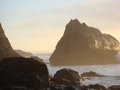 MartinsBeach_2007-220 (Martins Beach, California, United States) Photo