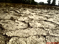 life going on.............. (Gour's) Tags: farm ropar