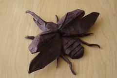 Flying Hercules Beetle (shuki.kato) Tags: insect flying origami beetle hercules scarab
