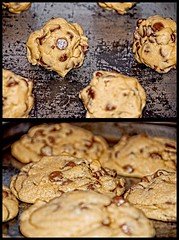 Bokeh Chip Cookies On A Well-Used Cookie Sheet (|sumsion|) Tags: november usa cookies utah baking nikon bokeh homemade chip loves these 2008 chocolatechipcookies skyla d90 sumsion nikond90 fatgirlrecipes nikond90club |sumsion| tonsoffatbutworthit 14minutesat325f theyrealmostthesizeofmyhead fatgirlrecipesubmission sumsioncom
