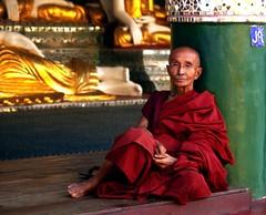 A Burmese Monk Contemplates (El-Branden Brazil) Tags: yangon burma buddhism myanmar burmese pagan bagan rangoon myanmarese onephotoweeklycontest