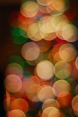 Christmas Bokeh (laughlinc) Tags: christmas bokeh t4l abigfave nikond80 thechallengefactory laughlinc t4lagree