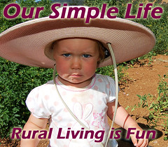 Our Simple Life