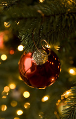 Christmastime is Here (sweber4507) Tags: christmas red holiday tree glass ball festive gold lights dof bokeh decoration filigree beautifulexpression capturedlight