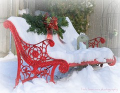Red bench in snow (lynne_b) Tags: christmas winter red snow cold weather yard bench snowflakes illinois holidays december seasons redribbon seat decoration il sit ribbon lantern myyard redbench explored twtme snowflakesbypicnik
