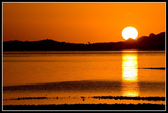 Summer Nights (Chris Gin) Tags: sunset newzealand beach auckland nz hillsborough grannysbay