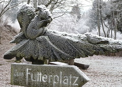 Futterplatz (H.B.Koch) Tags: wood winter germany squirrel frost hessen hoarfrost holz taunus eichhrnchen reif wegweiser badschwalbach feedingground hbkoch