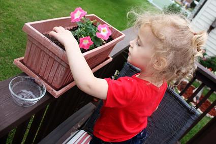 Auttie-planting-seeds