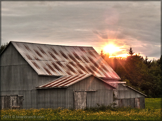 P1150747_farm_summer_solstice