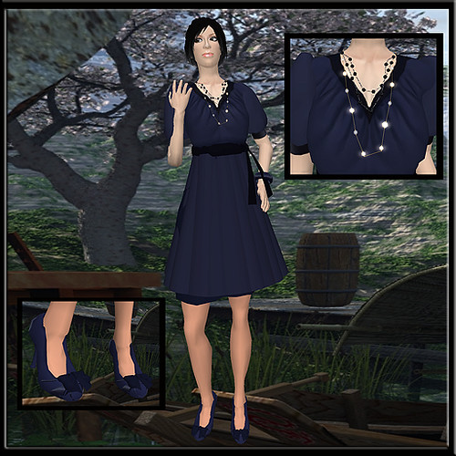 Token_Navy Dress