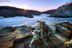 Story of The Branch (Ragstatic) Tags: water nd8 landscape landscapes greatfalls waterfall virginia shenandoah america usa rocks rock branch tree sky sunrise sun motion view relax explore ragsphotography sunset seascape sea hdr blending dri reflection city beach morning dawn color stockphoto clouds longexposure exposure happy light famous photo photograph singaporelandscape singaporeseascape singaporenightshot nightshot singapore