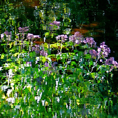 Giverny Spirit XLIV!!! (Denis Collette...!!!) Tags: wild canada reflection river painting bravo quebec spirit dream rivire peinture reflet monet collette giverny denis esprit sauvage rve themoulinrouge youtube portneuf firstquality eow pontrouge infinestyle deniscollette wildriver givernyspirit world100f theimpressionists lesimpressionistes espritdegiverny