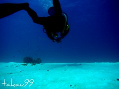 Diver at Similan Islands, Thailand