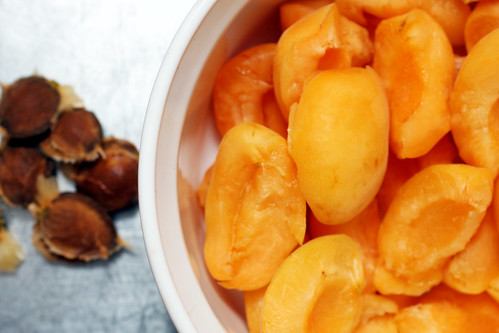 torn and pitted apricots