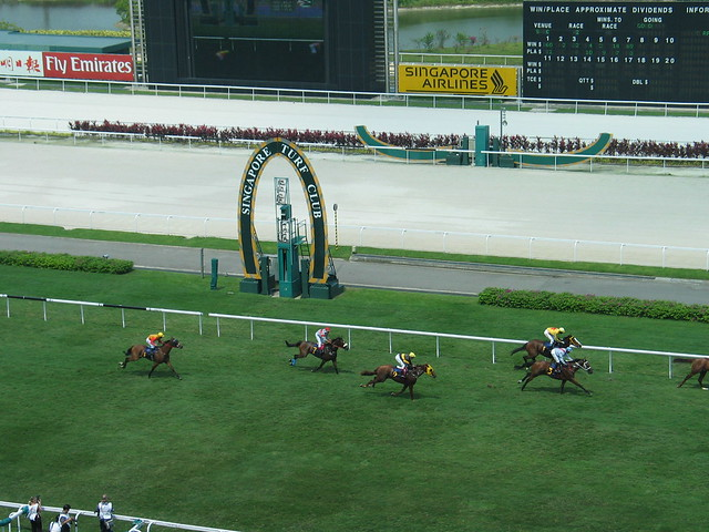 Singapore Turf Club horse racing